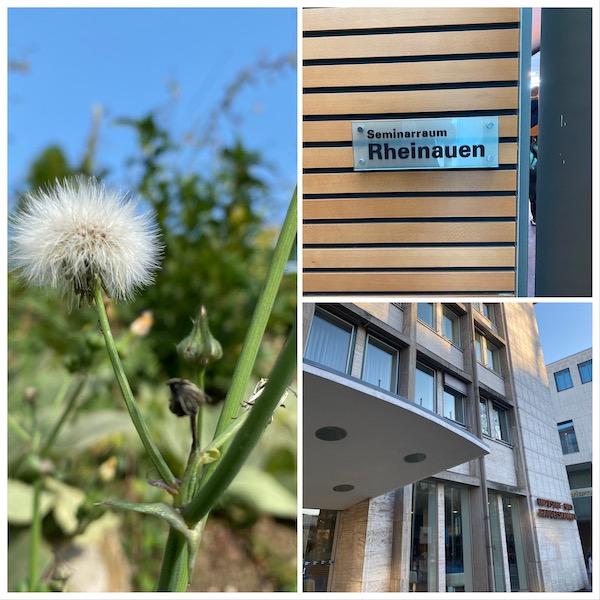 Zusatzqualifikation Qualitätsmanagement für Kaufleute in Karlsruhe